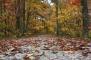 2013-11-29 - The Way (IMG_2888)