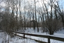 2013-12-06 - Whiter than Snow (IMG_0424)