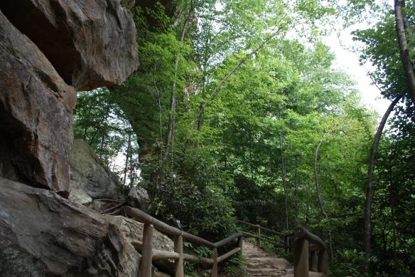 Natural Bridge - Below (IMG_1728)
