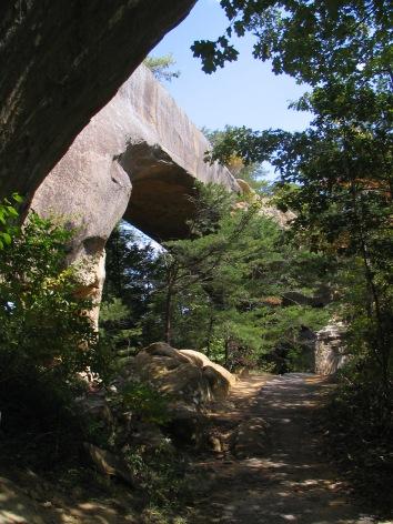 Sky Bridge (IMG_1052)