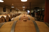 2014-03-07 - The Good Wine (IMG_1007)