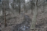 2014-03-22 - A River of Mud-- (IMG_1120)